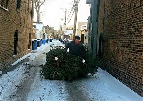 chicago christmas tree recycling chicago