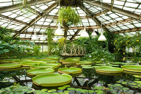 St Petersburg Botanical Garden Botanical Gardens In Russia