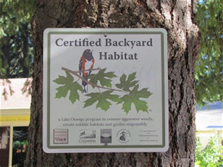certified backyard habitat exploring tryon creek backyard habitat behind the scenes