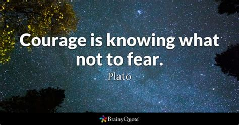 not frayed to fly surviving the loss of your soul mate books courage quotes brainyquote