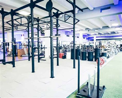 mannheim fitnessstudio mannheim city e1 venicebeach fitness