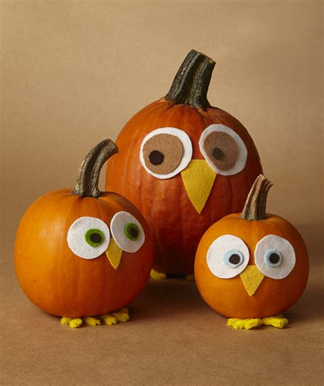 Small Pumpkins Decorating Ideas by Pumpkin Ideas Archives Aer Apartments