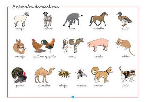 imagenes de animales salvajes y domesticos im 225 genes de animales dom 233 sticos im 225 genes