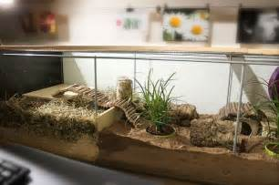 Display Cabinet Hamster Cage Ikea Detolf Hack For Hamster Cage I Want To Do This