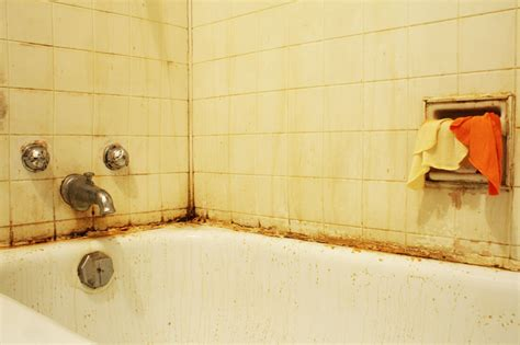mildew in bathtub avoiding costly home repairs archives