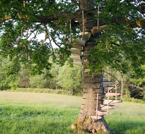 the canopy treehouses now you can add a spiral staircase to any tree with