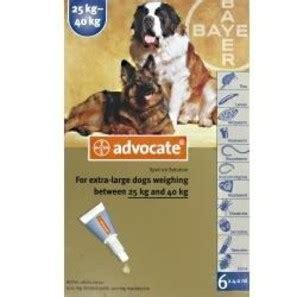 Advocate Xl For Dogs 25 40 Kg 1 Obat Kutu Anjing advocate xl 25 40kg prescription chemist direct