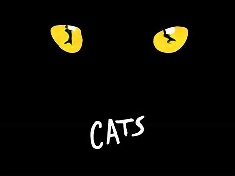 cats musical cats musical a great success in broadway dogalize