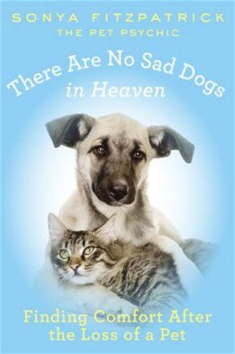 words of comfort for loss of pet there are no sad dogs in heaven finding comfort after the