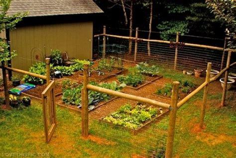 vegetable garden fence 27 cheap diy fence ideas for your garden privacy or