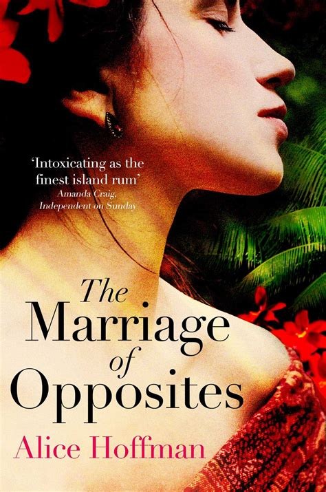the marriage of opposites the marriage of opposites book by alice hoffman official publisher page simon schuster uk