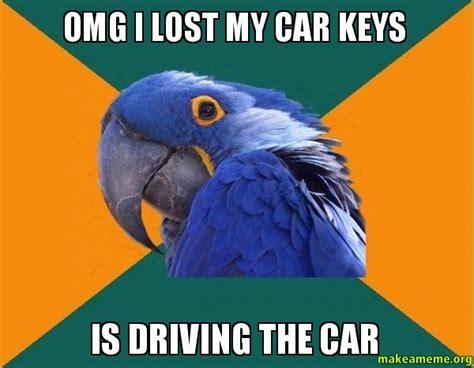 Lost Keys Meme - omg i lost my car keys is driving the car paranoid parrot make a meme