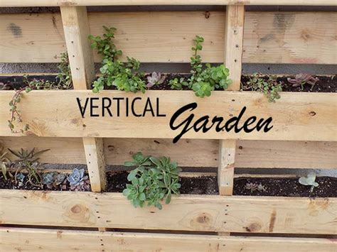 make your own pallet vertical garden live uncluttered