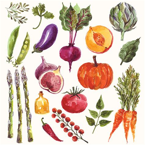 watercolour fruit vegetable collection of watercolor vegetables and fruit fine art print