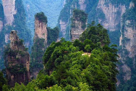 Lu Taman Tiang 5 hutan tercantik di dunia untuk di lawati pelancongan