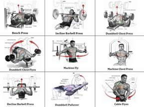 bench press routine for mass mass building workout 7 exercises for an explosive chest