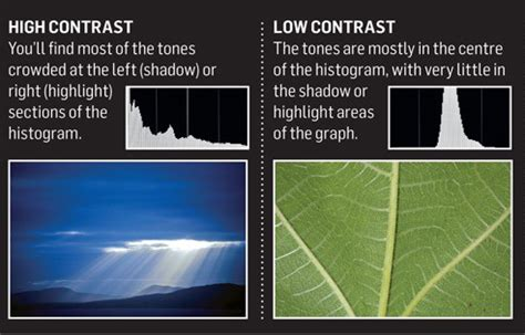high contrast image vs low contrast pixelpluck