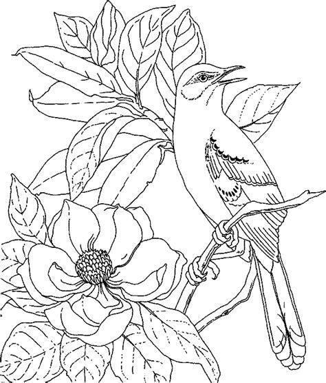 Coloriage Fleurs Et Plantes Magnolias 224 Colorier