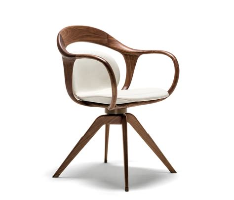 modern dining chair design norah small armchair visitors chairs side chairs from