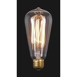 edison base light bulb with squirrel cage style filament