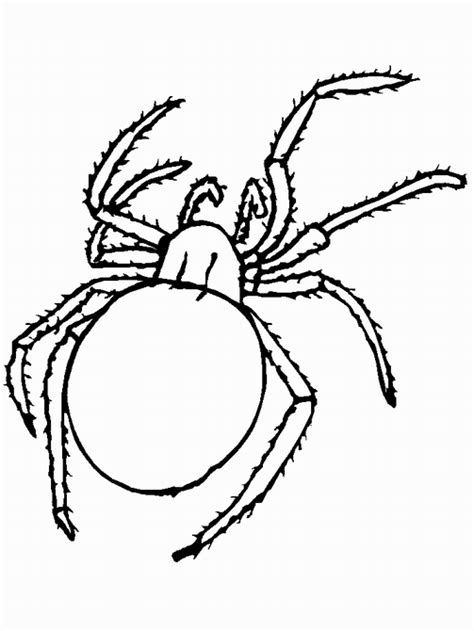 A Bug Coloring Pages Insect Coloring Page