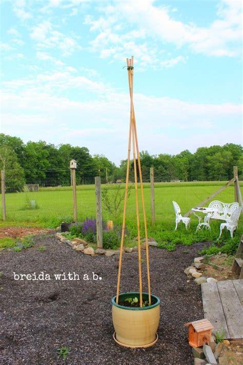 Small Flower Trellis Trellis Plants In Pots Woodworking Projects Plans