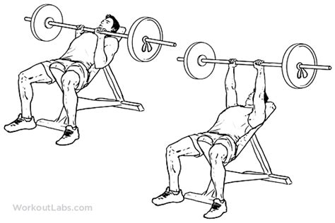incline close grip bench incline close grip bench press workoutlabs