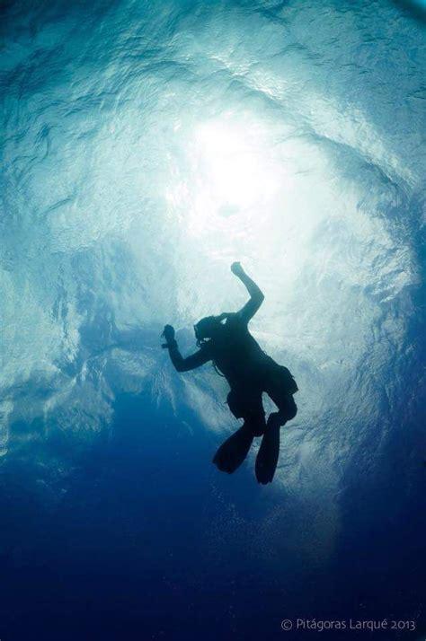 best dive shop 25 best ideas about dive shop on scuba dive