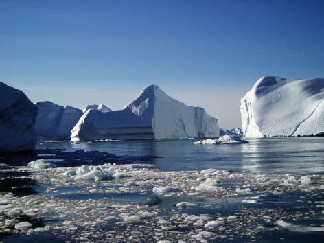 wwf climate change program | wwf climate change program