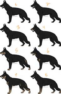 german shepherd color chart bi color german shepherds by isolated adoptables on deviantart