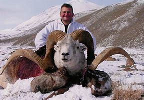 "marco polo sheep the ""holy grail"" of hunting 