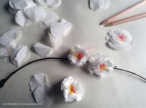 fior di ciliegio fiore di ciliegio keni candlecomfortzone