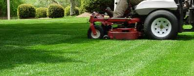 Gardening Companies Lawn Cleanup Landscape Company Lawn Maintenance