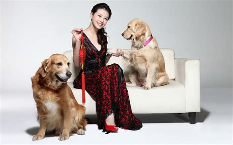 females with dogs the with two dogs wallpapers and images wallpapers pictures photos