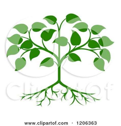 clipart of a green seedling tree with leaves and roots