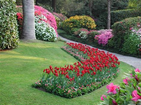 casa di cura valle fiorita roma ladri dal pollice verde ripetuti furti di piante nelle