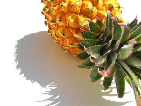 pineapple wallpaper pineapple wallpapers wallpaper cave