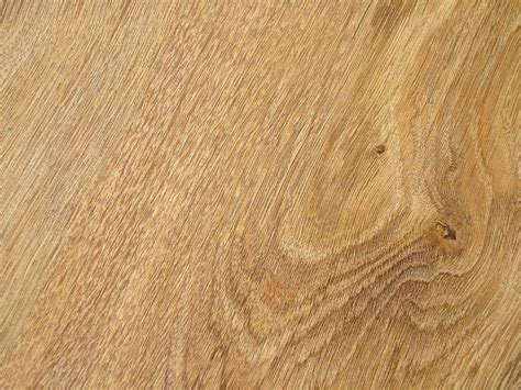 fresh what is a good laminate flooring for dogs 7760