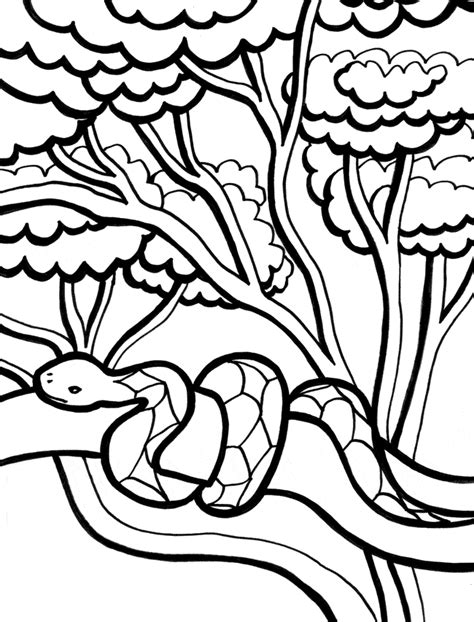 pages images snake coloring page animals town animals color sheet