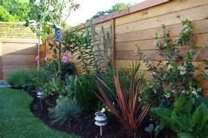 aloe test garden