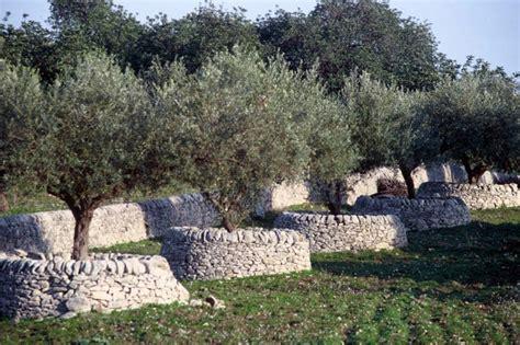lioni esterni per giardino pietre per giardini granulati in marmo o porfido per i