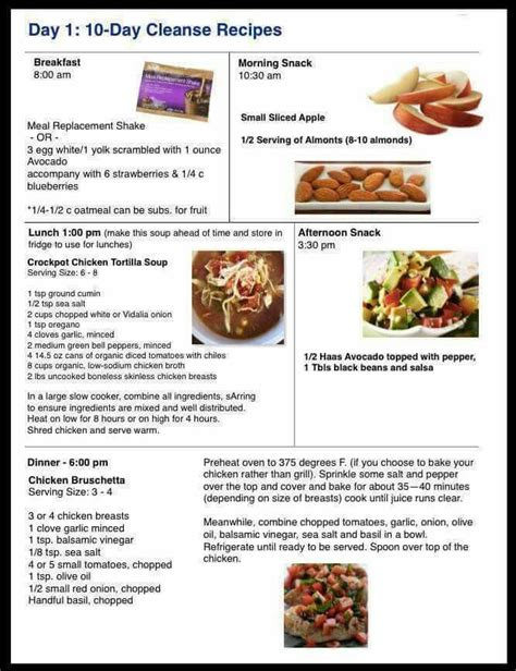 10 Day Tummy Detox Recipes by Best 25 Advocare Cleanse Recipes Days 1 10 Meals Ideas On