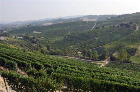 commissione agricoltura commissione agricoltura ue fa da sola su vino conteso