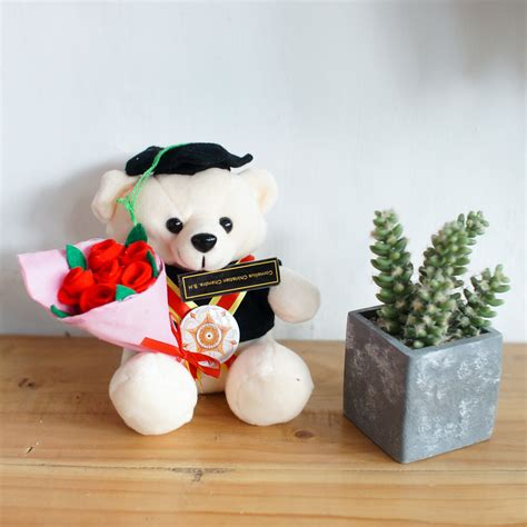Boneka Wisuda 20cm toko boneka teddy imut buket bunga flanel 0858 7874