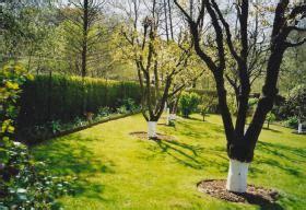 kleingarten kaufen rostock sch 246 nen garten am teich in papendorf in rostock privat