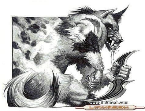 imagenes de lobos chidas hombres lobos imagenes de hombre lobo dibujos fotos