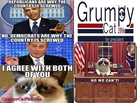 grumpy cat for president 2016 will this thread survive until 2020 come closer page 7