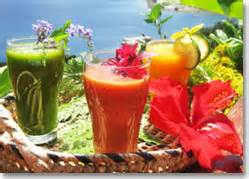 Detox Fiji by Advanced Detox Cleanse With Naveria Heights Lodge