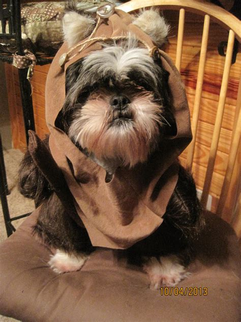 ewok puppy ewok fur costume size small