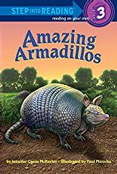 armadillo crafts  learning activities  kids
